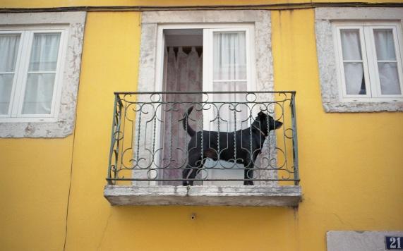 Lisboa_q