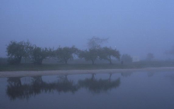 Mist9