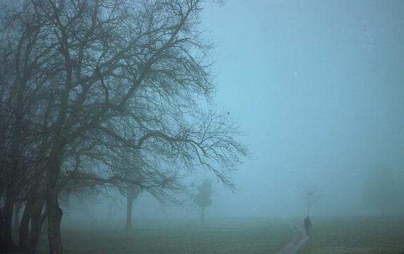 Mist_d